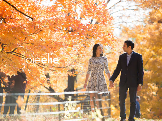 Autumn Engagement photo shoot in Central Park NYC